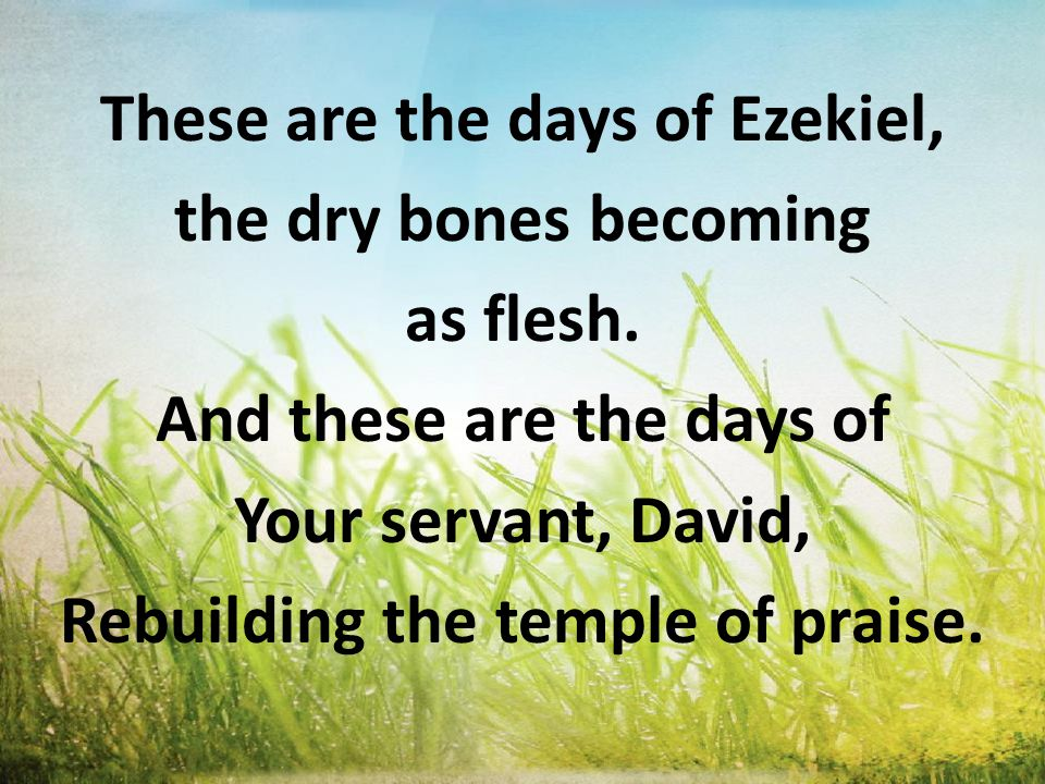 And these are the days of the harvest; the fields are as white in the world.