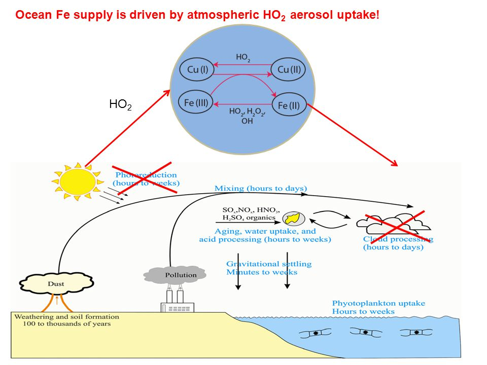 HO 2 Ocean Fe supply is driven by atmospheric HO 2 aerosol uptake!