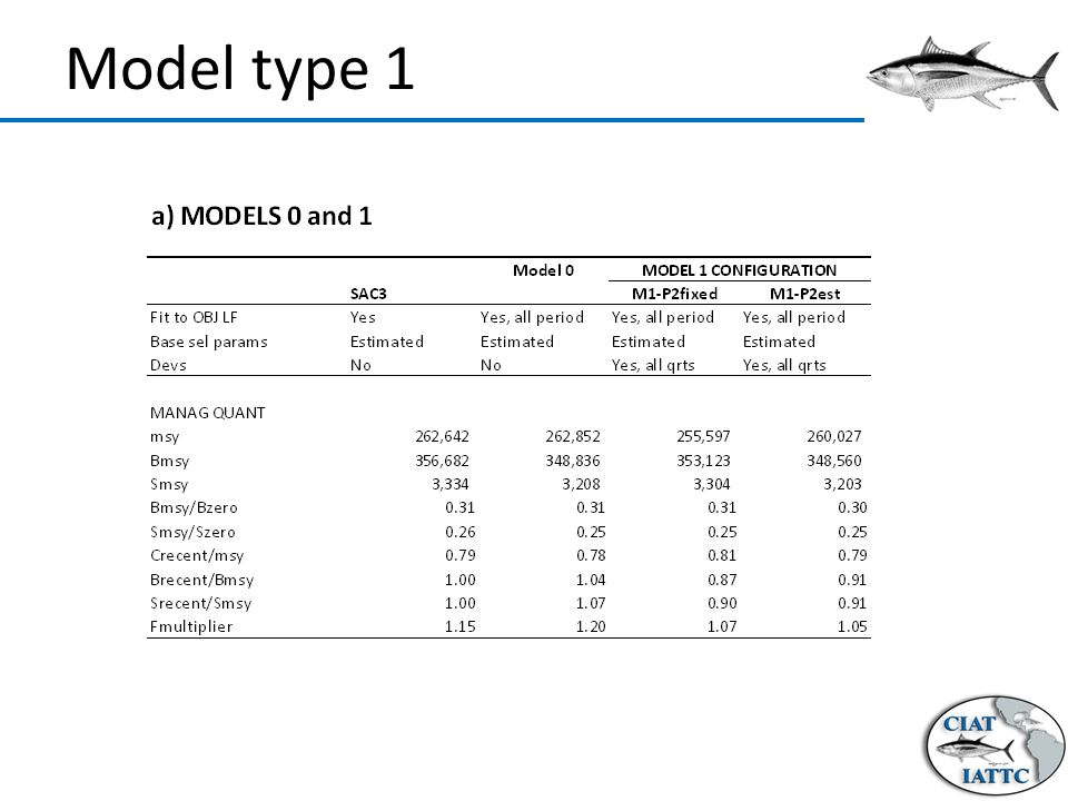 Model type 1