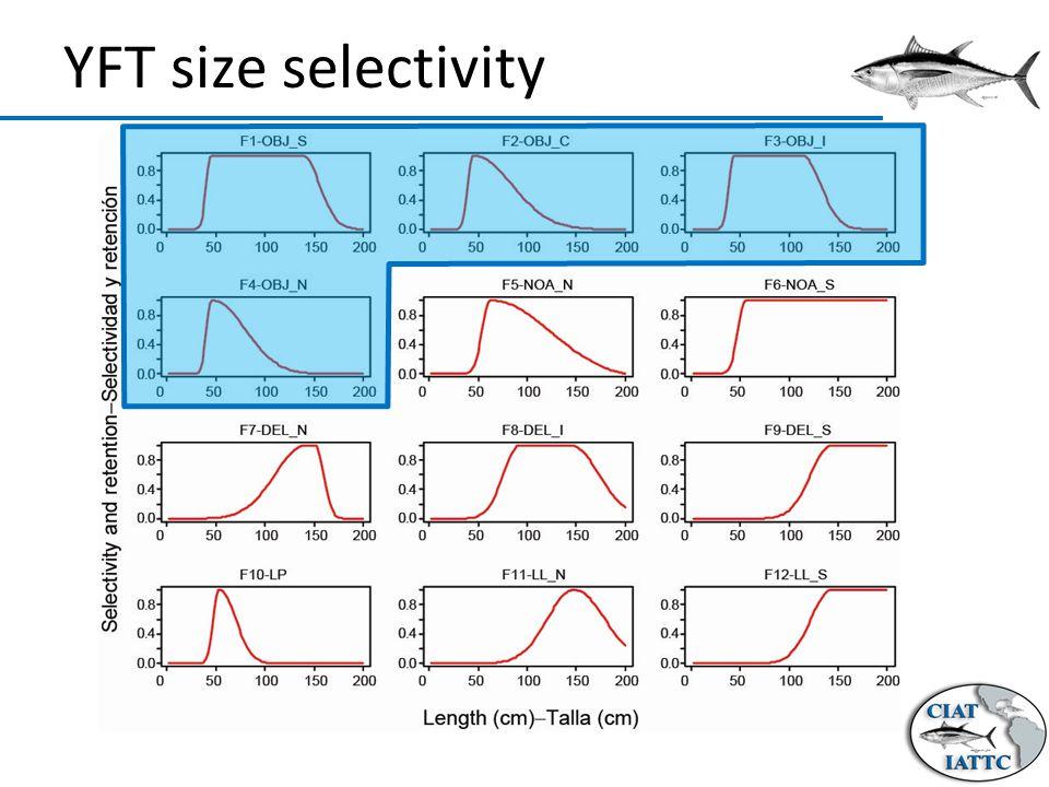 YFT size selectivity