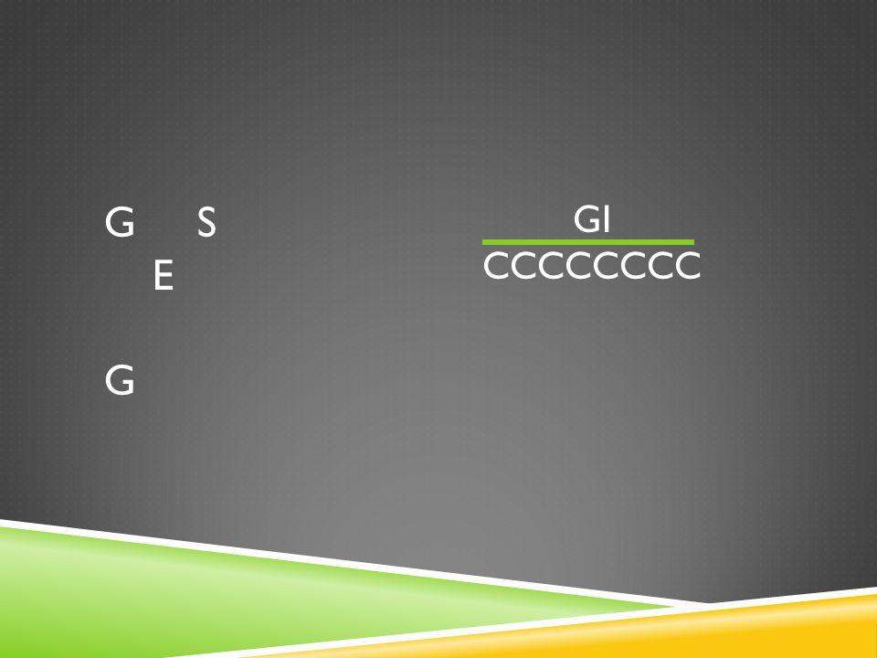 G S E G GI CCCCCCCC