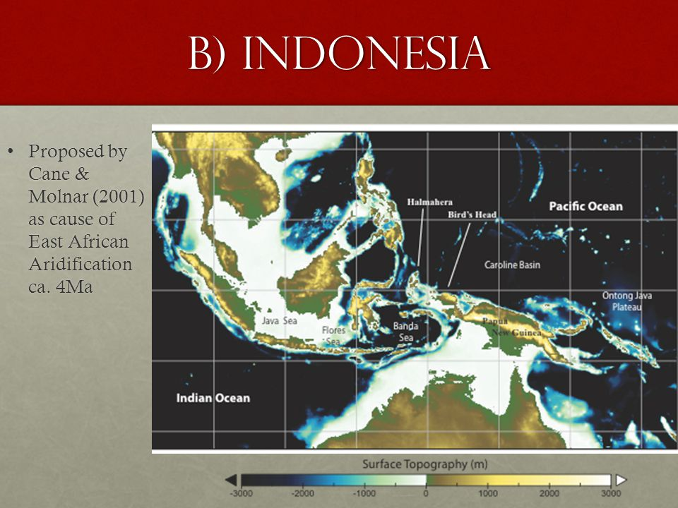 B) Indonesia Proposed by Cane & Molnar (2001) as cause of East African Aridification ca.