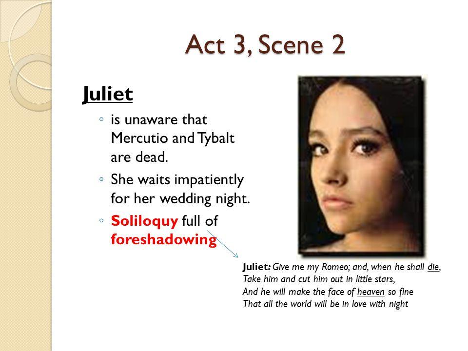 essay assignments romeo juliet