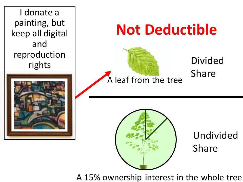 Divided Share Undivided Share Not Deductible A leaf from the tree A 15% ownership interest in the whole tree I donate a painting, but keep all digital