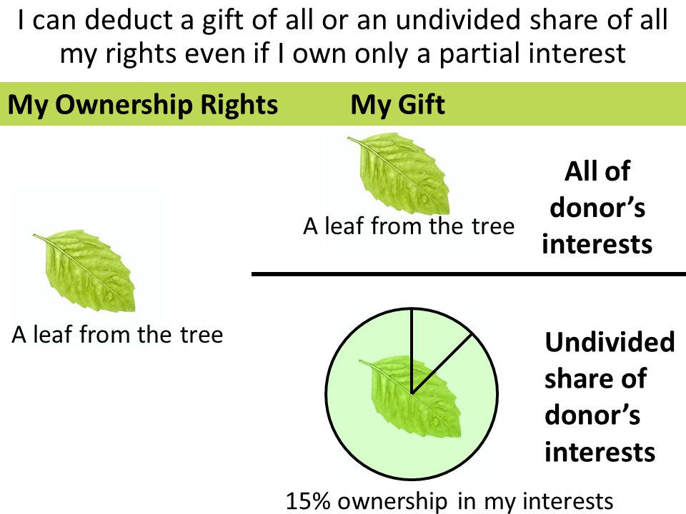 I can deduct a gift of all or an undivided share of all my rights even if I own only a partial interest All of donor's interests Undivided share of donor's interests A leaf from the tree 15% ownership in my interests A leaf from the tree My Ownership RightsMy Gift