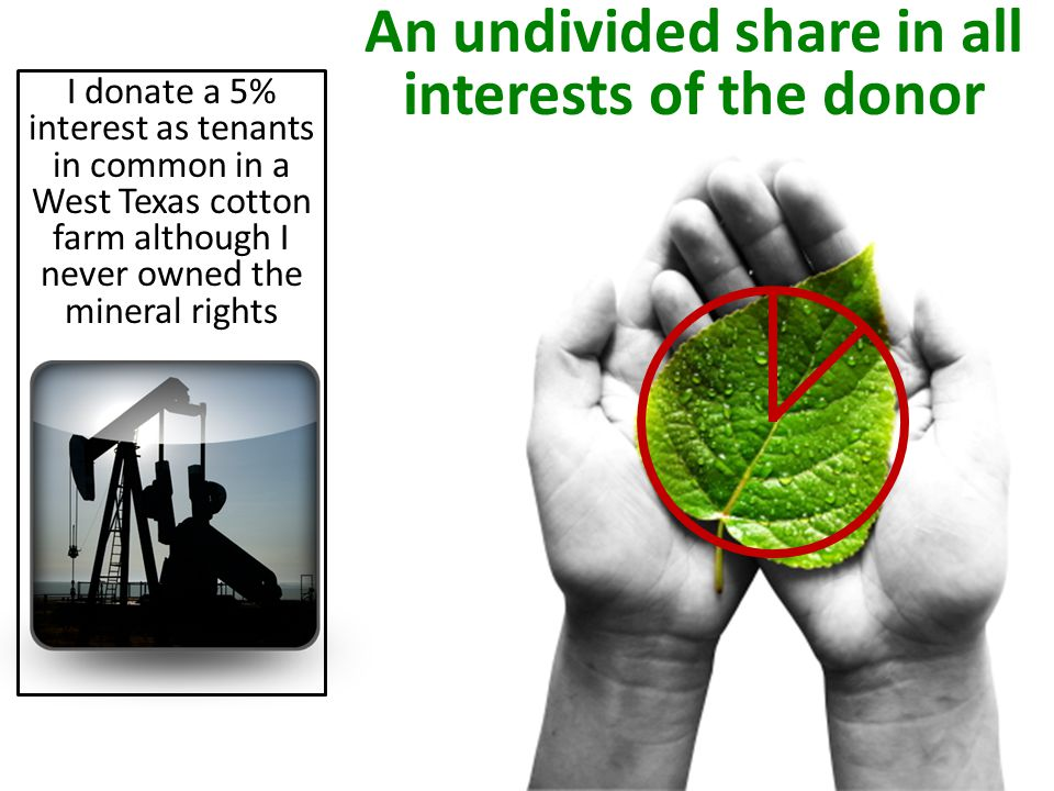 I donate a 5% interest as tenants in common in a West Texas cotton farm although I never owned the mineral rights An undivided share in all interests of the donor
