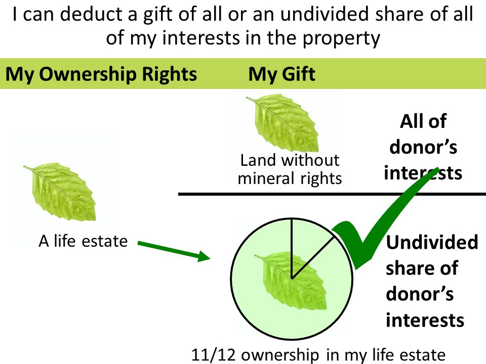 I can deduct a gift of all or an undivided share of all of my interests in the property All of donor's interests Undivided share of donor's interests Land without mineral rights 11/12 ownership in my life estate A life estate My Ownership RightsMy Gift