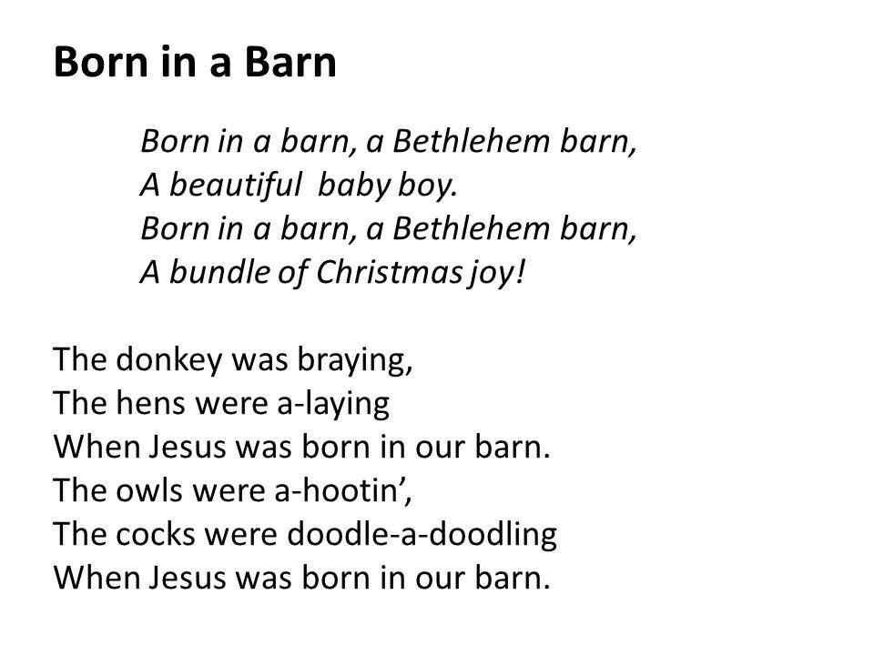 Born in a Barn Born in a barn, a Bethlehem barn, A beautiful baby boy. Born in a barn, a Bethlehem barn, A bundle of Christmas joy! The donkey was bra