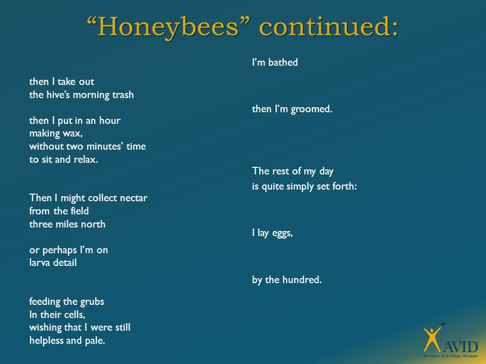 """""""Honeybees"""" continued: then I take out the hive's morning trash then I put in an hour making wax, without two minutes' time to sit and relax. Then I m"""