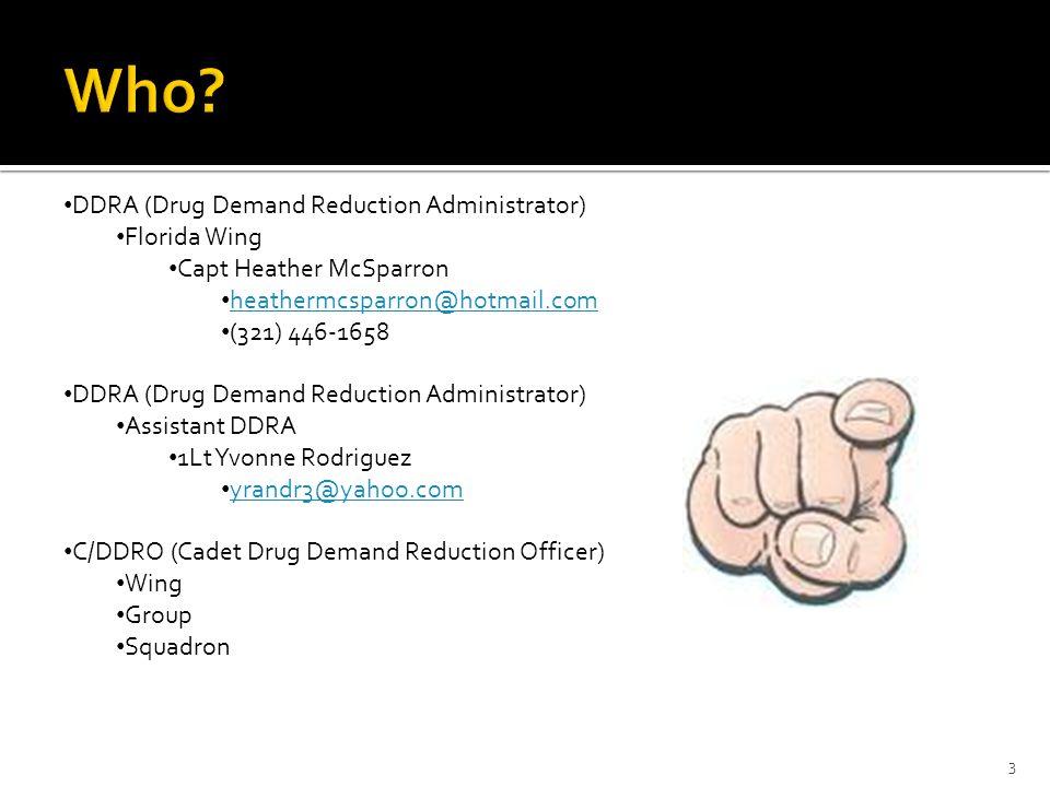 3 DDRA (Drug Demand Reduction Administrator) Florida Wing Capt Heather McSparron heathermcsparron@hotmail.com (321) 446-1658 DDRA (Drug Demand Reducti