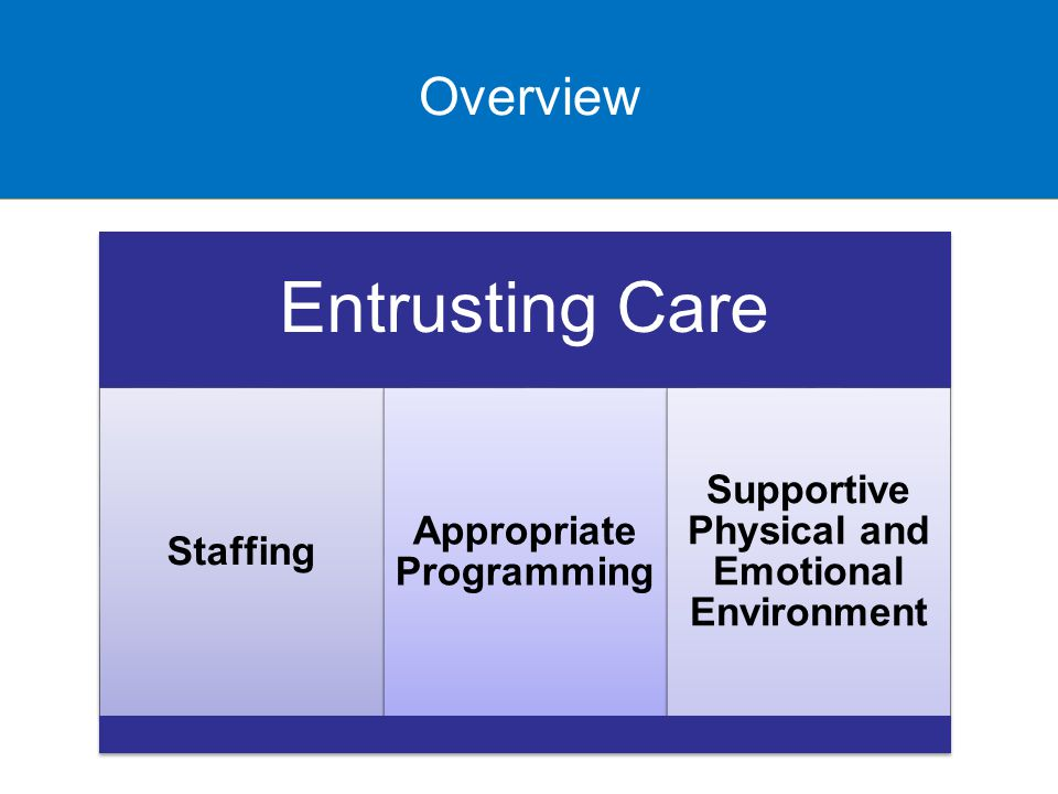Overview Entrusting Care Staffing Appropriate Programming Supportive Physical and Emotional Environment Overview
