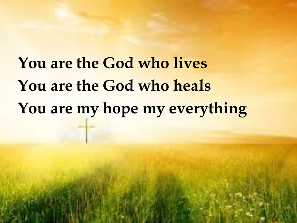 There is no victory But Jesus crucified No other cure for sin But that our Saviour died No other hope we have But that He rose again