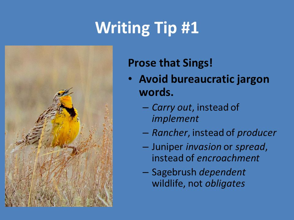 Writing Tip #1 Prose that Sings! Avoid bureaucratic jargon words. – Carry out, instead of implement – Rancher, instead of producer – Juniper invasion