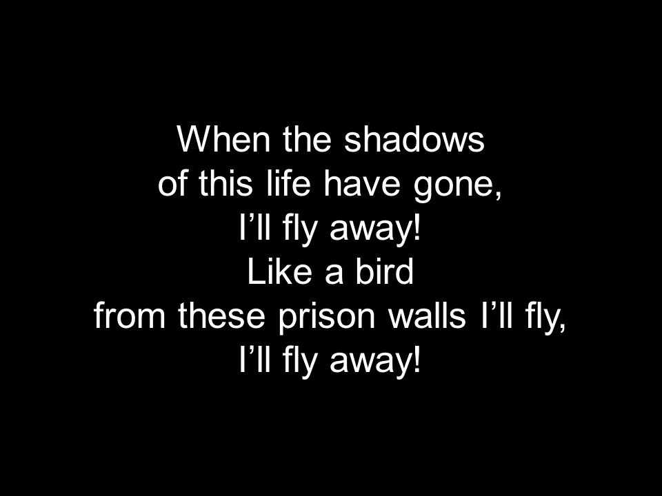 When the shadows of this life have gone, I'll fly away.