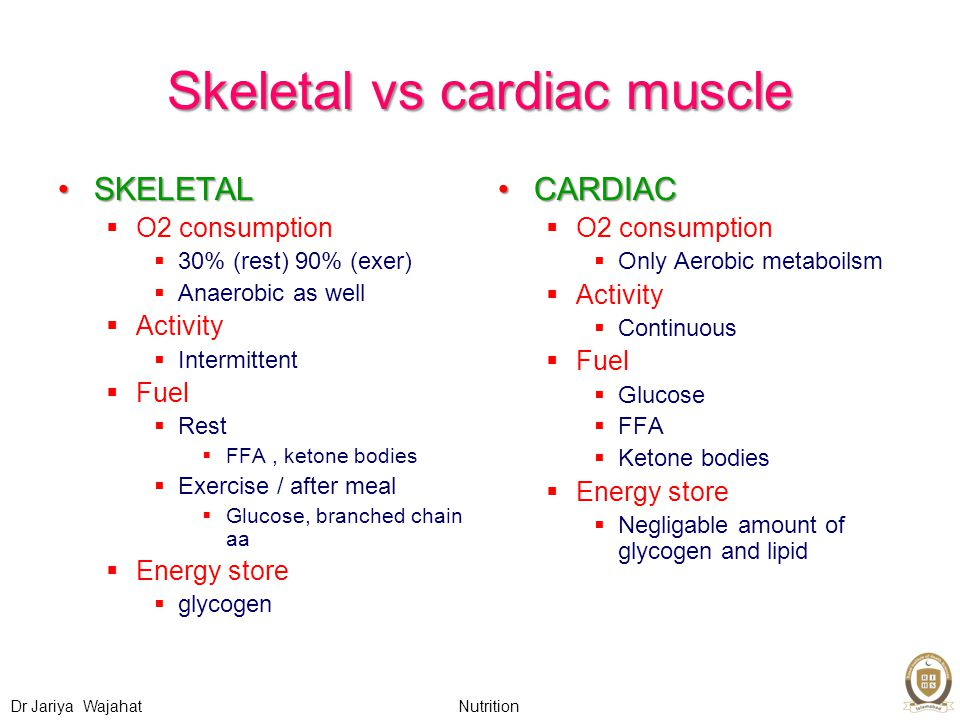 Nutrition Dr Jariya Wajahat Skeletal vs cardiac muscle SKELETALSKELETAL  O2 consumption  30% (rest) 90% (exer)  Anaerobic as well  Activity  Intermittent  Fuel  Rest  FFA, ketone bodies  Exercise / after meal  Glucose, branched chain aa  Energy store  glycogen CARDIACCARDIAC  O2 consumption  Only Aerobic metaboilsm  Activity  Continuous  Fuel  Glucose  FFA  Ketone bodies  Energy store  Negligable amount of glycogen and lipid