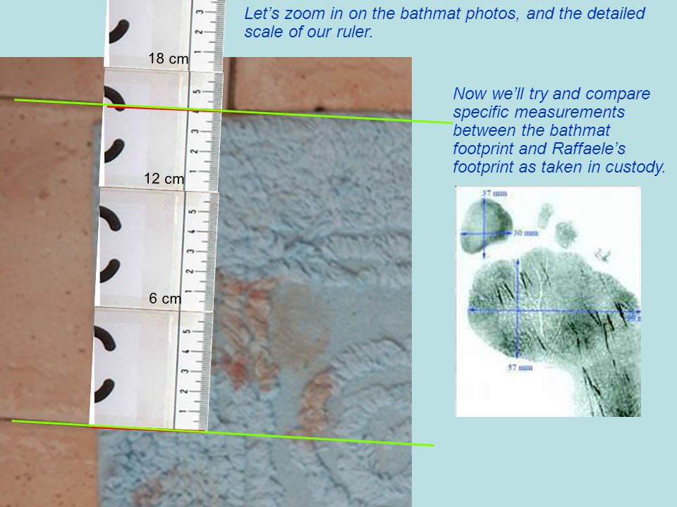 Let's zoom in on the bathmat photos, and the detailed scale of our ruler.