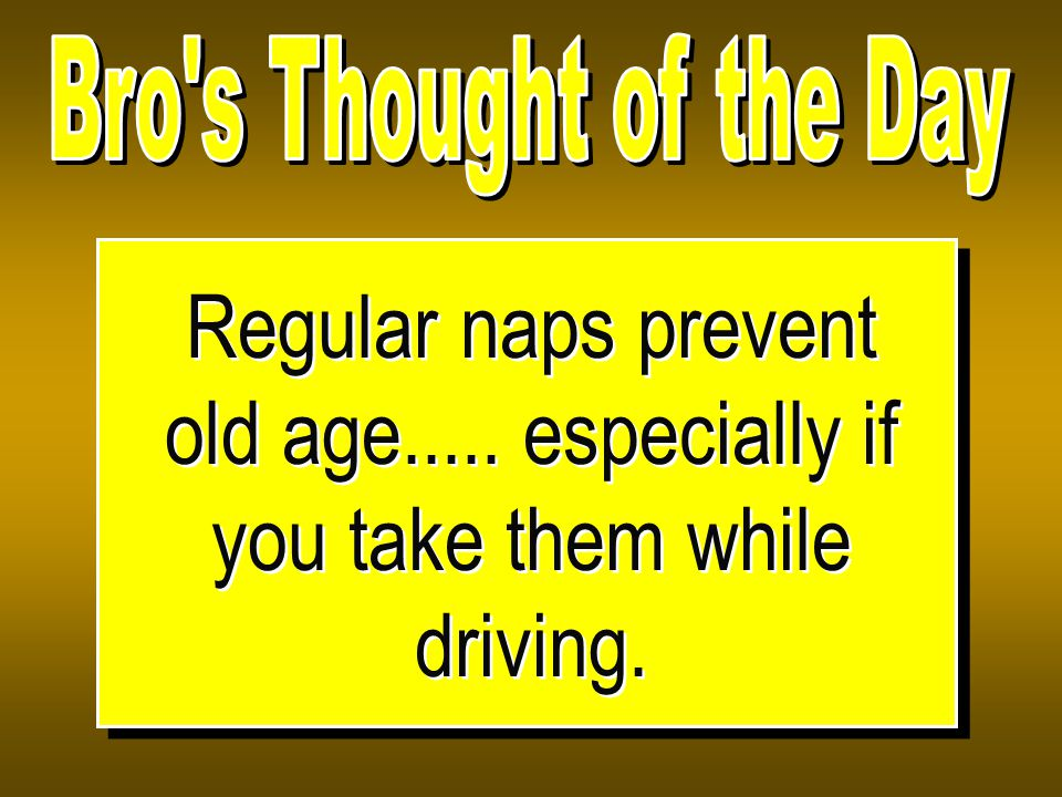Regular naps prevent old age..... especially if you take them while driving.