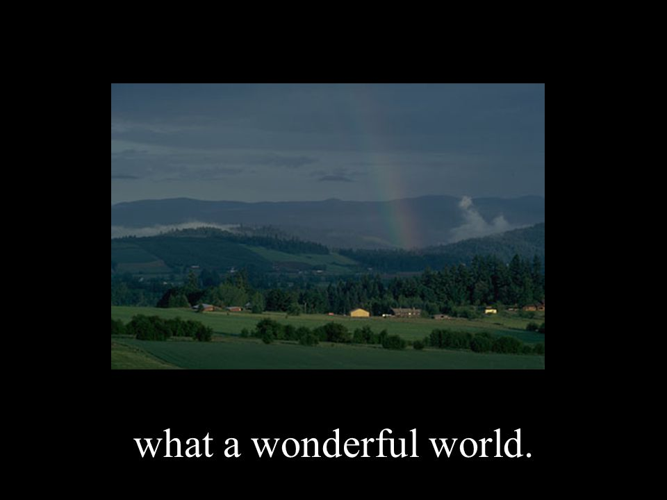 what a wonderful world.