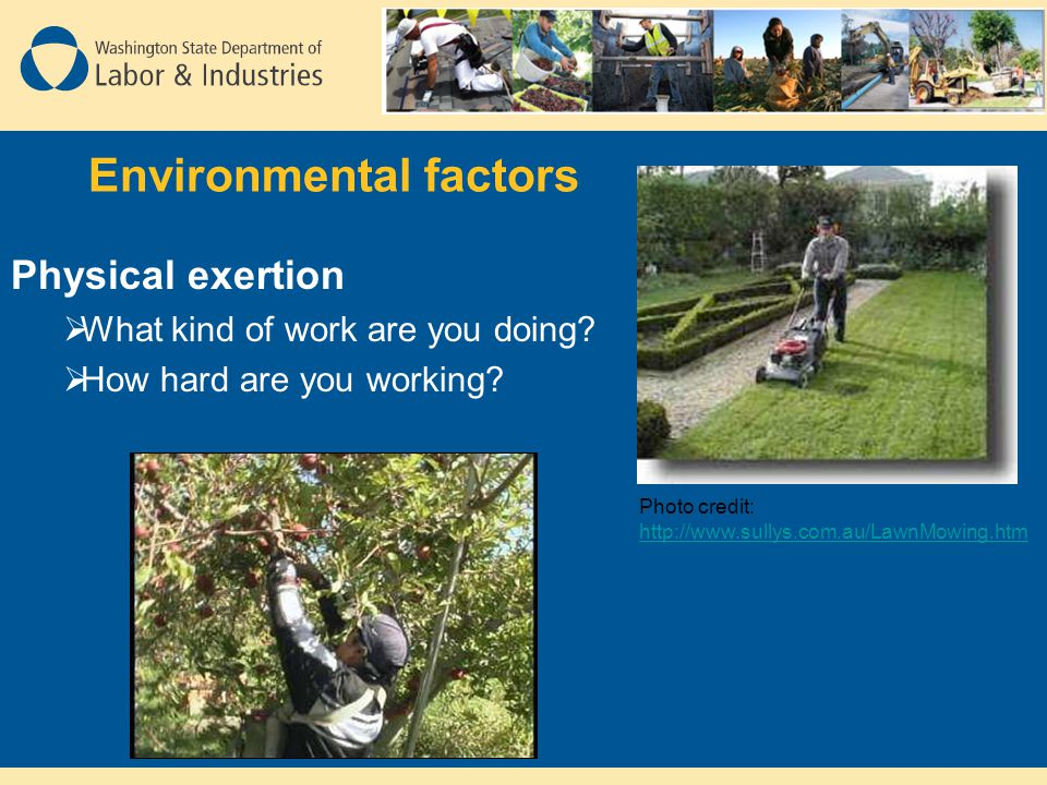 Environmental factors Physical exertion  What kind of work are you doing.