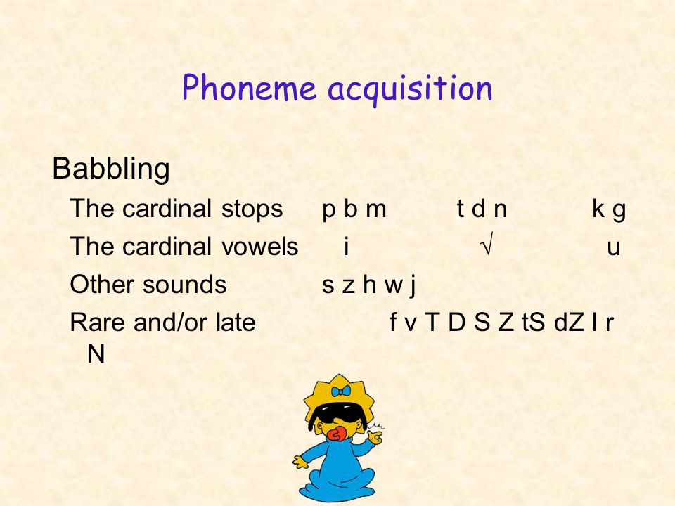 Phoneme acquisition Babbling The cardinal stopsp b mt d nk g The cardinal vowels i √ u Other soundss z h w j Rare and/or late f v T D S Z tS dZ l r N