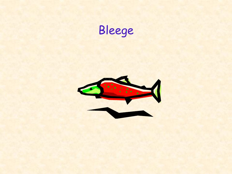 Bleege