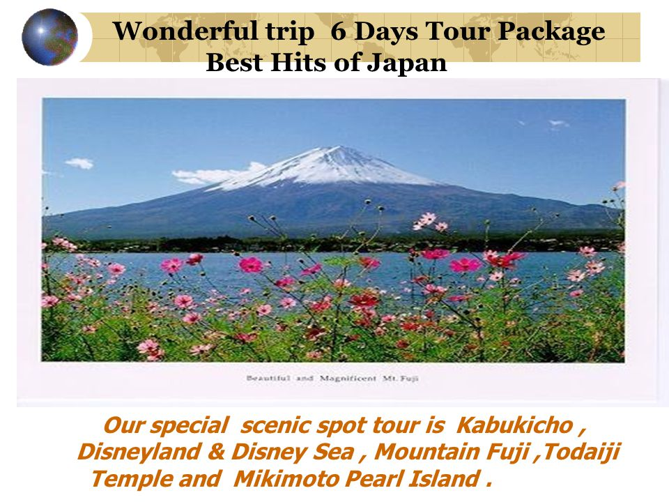 Wonderful trip 6 Days Tour Package Best Hits of Japan Our special scenic spot tour is Kabukicho, Disneyland & Disney Sea, Mountain Fuji,Todaiji Temple