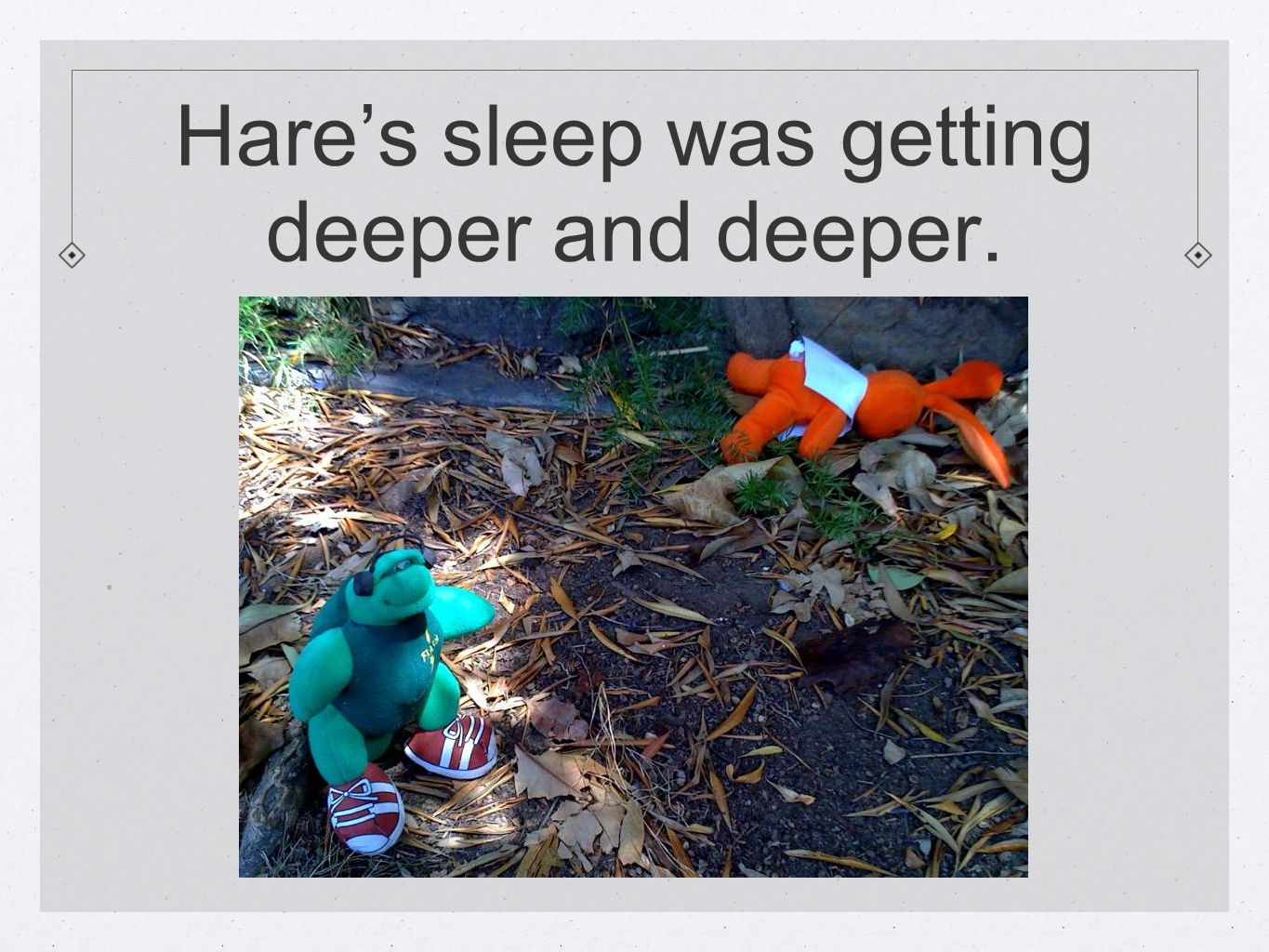 Hare's sleep was getting deeper and deeper..