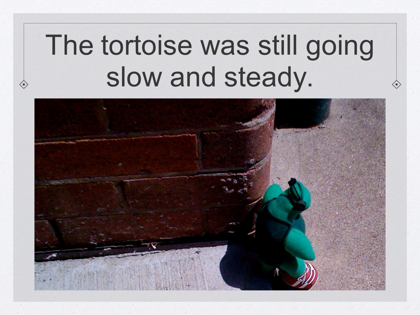 The tortoise was still going slow and steady.