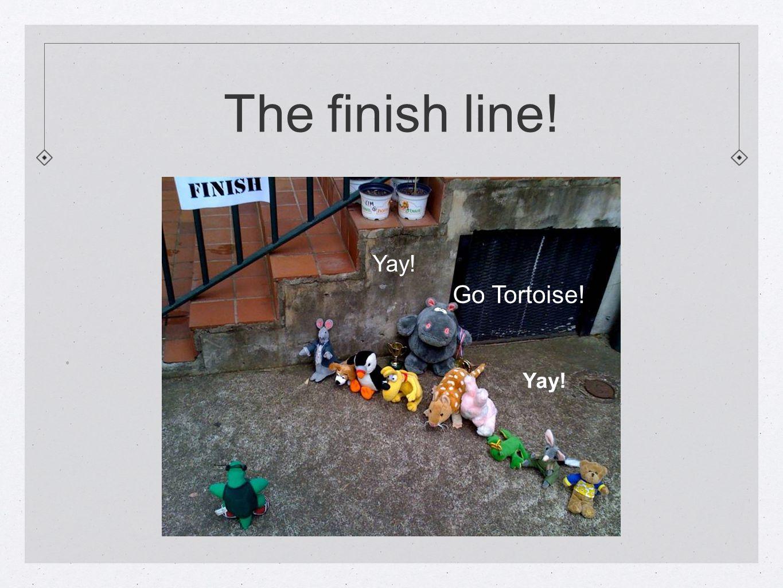 The finish line!. Yay! Go Tortoise! Yay!