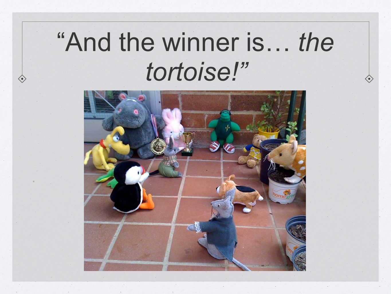 And the winner is… the tortoise! .