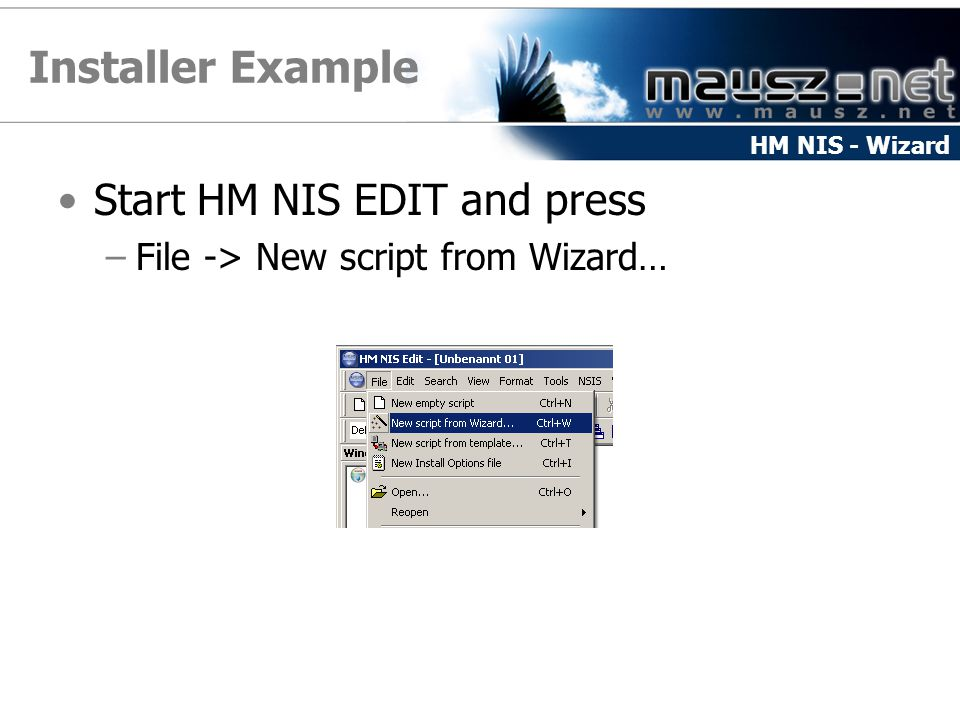 Installer Example Start HM NIS EDIT and press –File -> New script from Wizard… HM NIS - Wizard