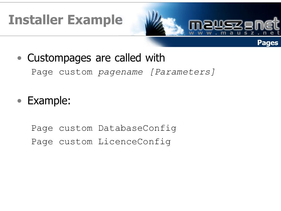 Installer Example Custompages are called with Page custom pagename [Parameters] Example: Page custom DatabaseConfig Page custom LicenceConfig Pages
