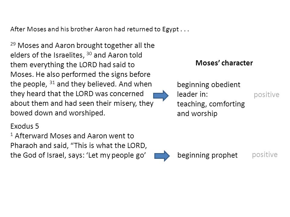 After Moses and his brother Aaron had returned to Egypt... 29 Moses and Aaron brought together all the elders of the Israelites, 30 and Aaron told the