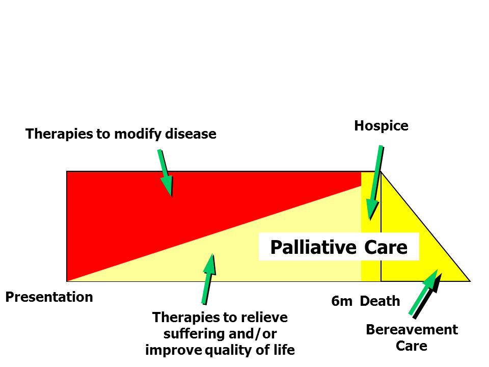 Palliative Care Therapies to modify disease Hospice Presentation Therapies to relieve suffering and/or improve quality of life Bereavement Care 6mDeath