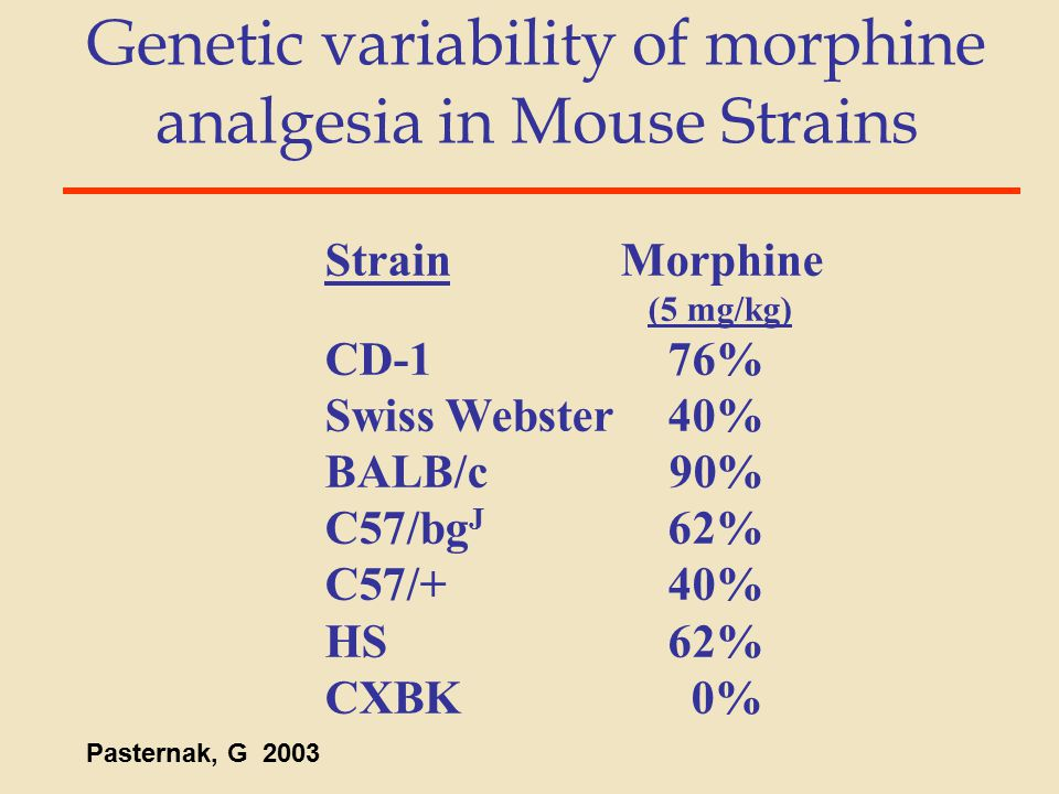 Genetic variability of morphine analgesia in Mouse Strains Strain Morphine (5 mg/kg) CD-176% Swiss Webster40% BALB/c90% C57/bg J 62% C57/+40% HS62% CX