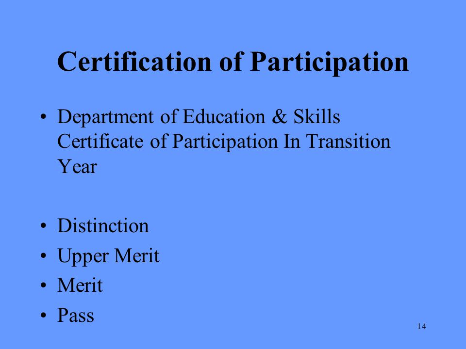 Certification of Participation Department of Education & Skills Certificate of Participation In Transition Year Distinction Upper Merit Merit Pass 14