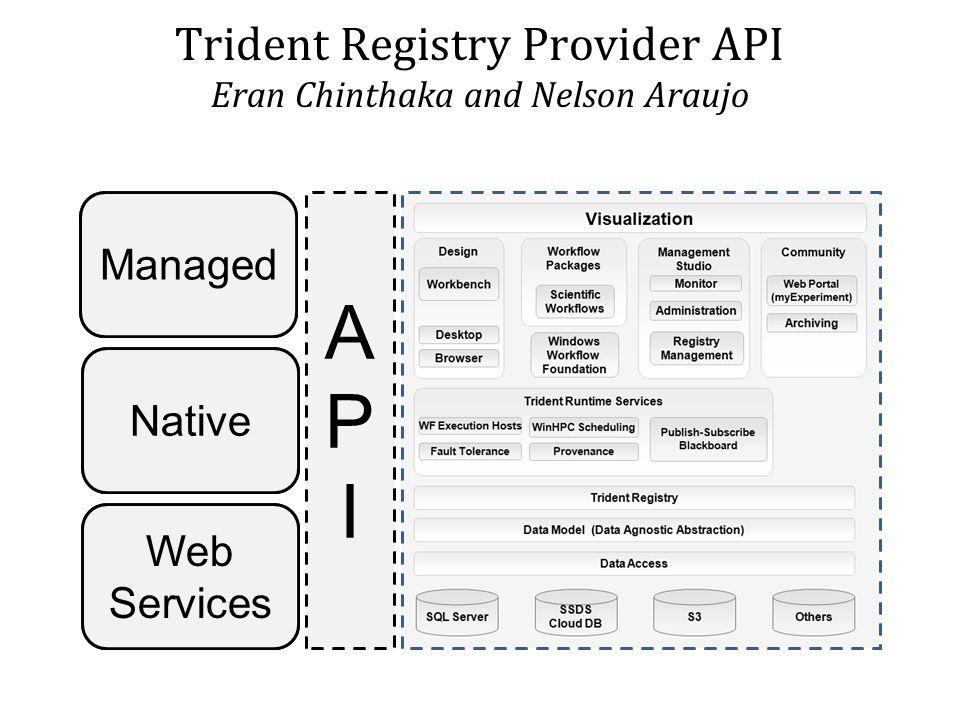 APIAPI Native Managed Web Services APIAPI Managed Native Web Services Trident Registry Provider API Eran Chinthaka and Nelson Araujo