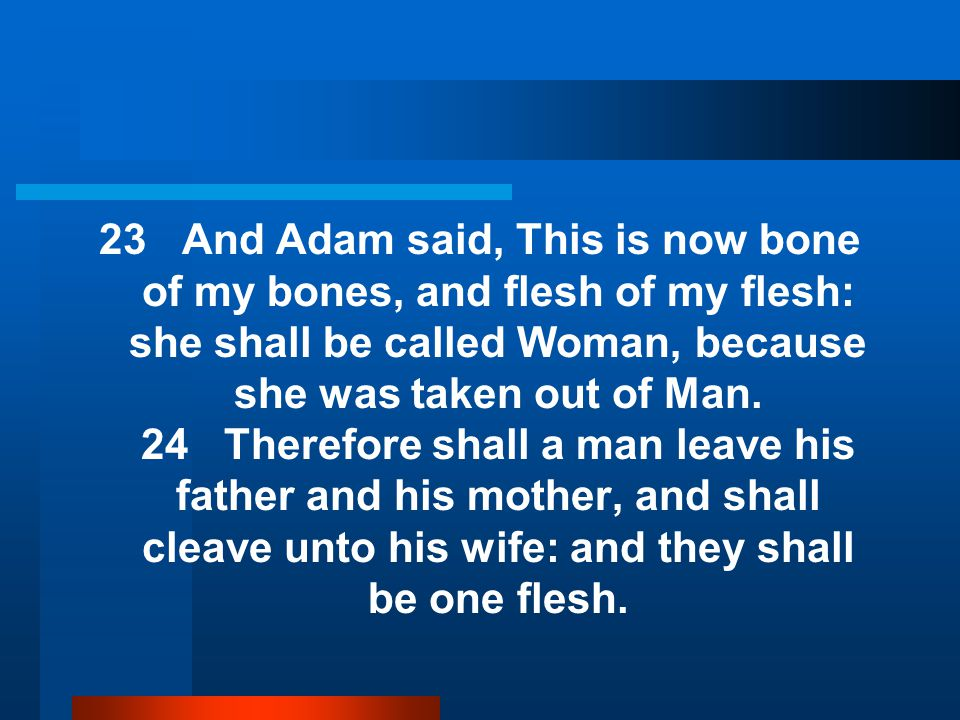 23 And Adam said, This is now bone of my bones, and flesh of my flesh: she shall be called Woman, because she was taken out of Man.