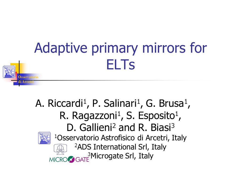 Osservatorio di Arcetri Adaptive primary mirrors for ELTs A.