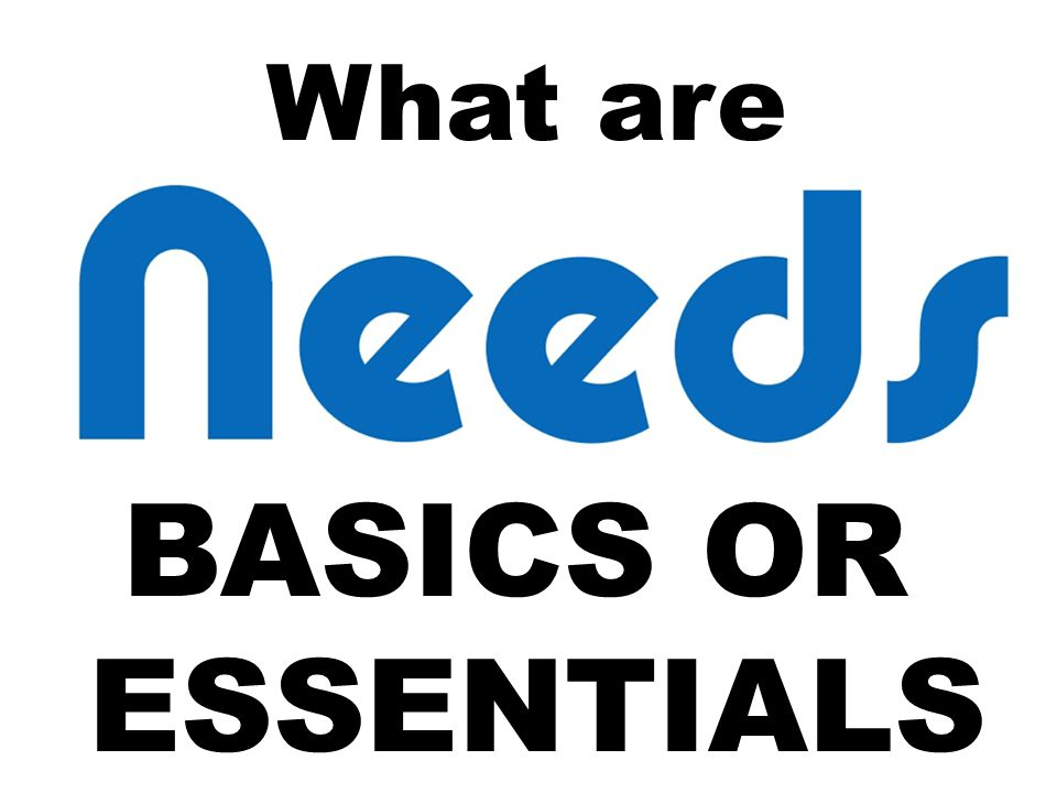 What are BASICS OR ESSENTIALS