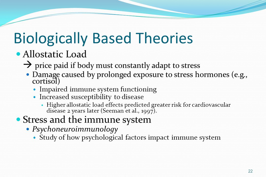 Biologically Based Theories Allostatic Load  price paid if body must constantly adapt to stress Damage caused by prolonged exposure to stress hormone