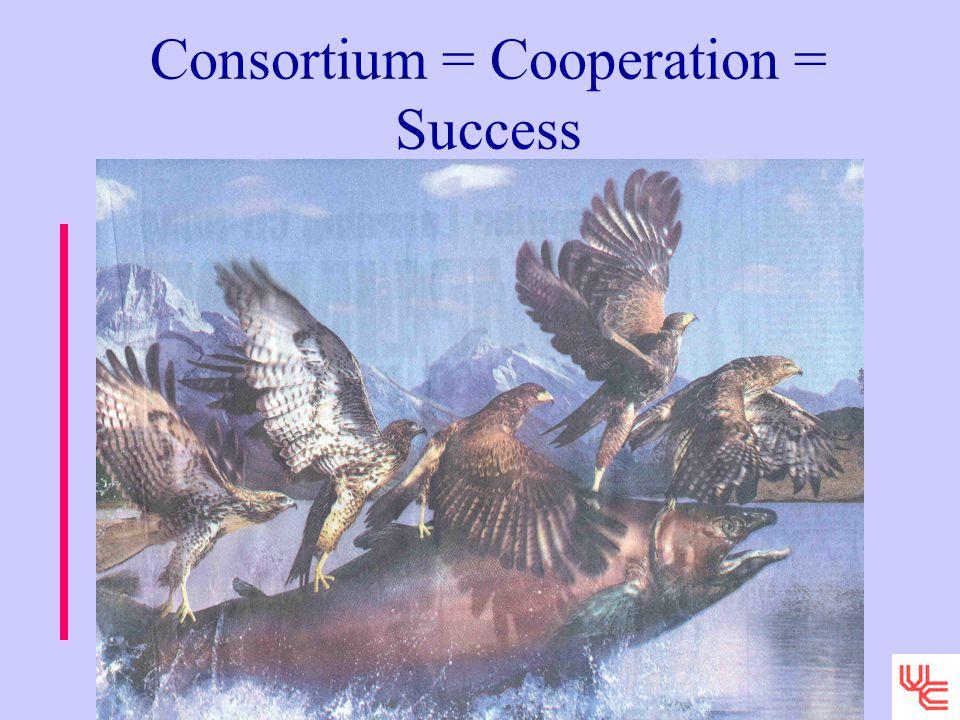 Consortium = Cooperation = Success