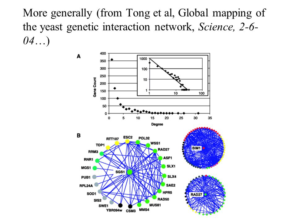 More generally (from Tong et al, Global mapping of the yeast genetic interaction network, Science, 2-6- 04…)