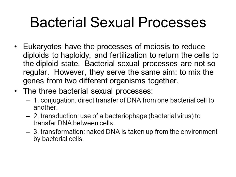 Bacterial Sexual Processes Eukaryotes have the processes of meiosis to reduce diploids to haploidy, and fertilization to return the cells to the diplo