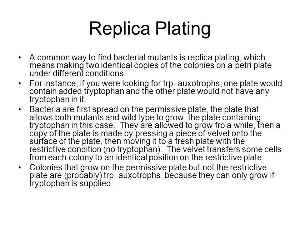 Replica Plating A common way to find bacterial mutants is replica plating, which means making two identical copies of the colonies on a petri plate un