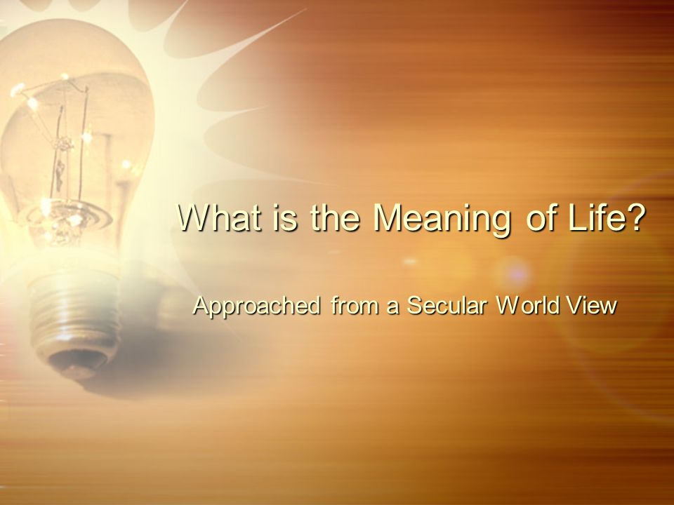 What is the Meaning of Life? Approached from a Secular World View