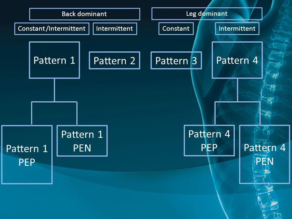 Pattern 1 Pattern 2Pattern 3 Pattern 4 Pattern 1 PEN Pattern 1 PEP Pattern 4 PEPPattern 4 PEN Back dominant Leg dominant Constant /IntermittentIntermittent ConstantIntermittent