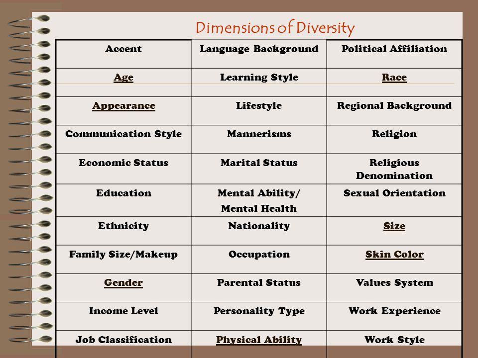 Dimensions of Diversity AccentLanguage BackgroundPolitical Affiliation AgeLearning StyleRace AppearanceLifestyleRegional Background Communication StyleMannerismsReligion Economic StatusMarital StatusReligious Denomination EducationMental Ability/ Mental Health Sexual Orientation EthnicityNationalitySize Family Size/MakeupOccupationSkin Color GenderParental StatusValues System Income LevelPersonality TypeWork Experience Job ClassificationPhysical AbilityWork Style