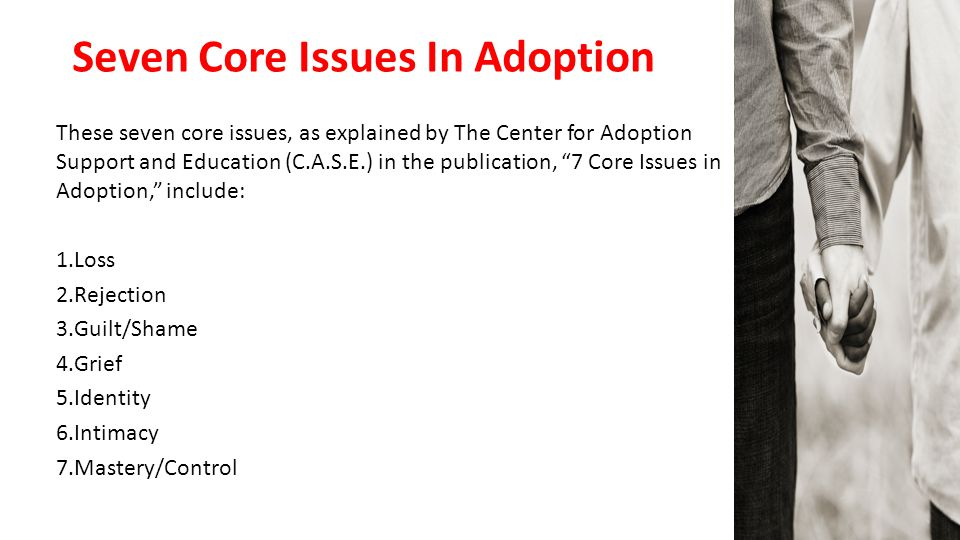 """Seven Core Issues In Adoption These seven core issues, as explained by The Center for Adoption Support and Education (C.A.S.E.) in the publication, """"7"""