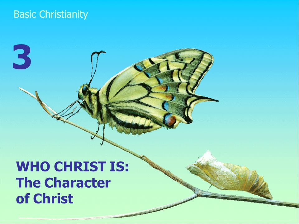 WHO CHRIST IS: The Character of Christ 3